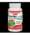 뉴트리돔 모링가 잎 500mg 120베지캡슐 유기농
