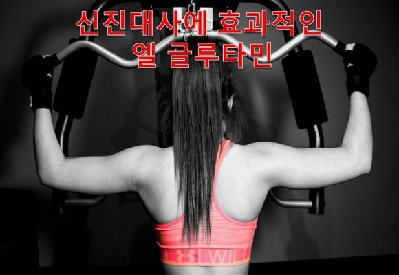 면역 강화, 근육 성장 및 근육 회복에 필수적인 글루타민(Glutamine)
