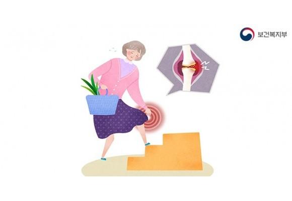 골다공증 예방에 좋은 영양제로 뼈건강 지키세요