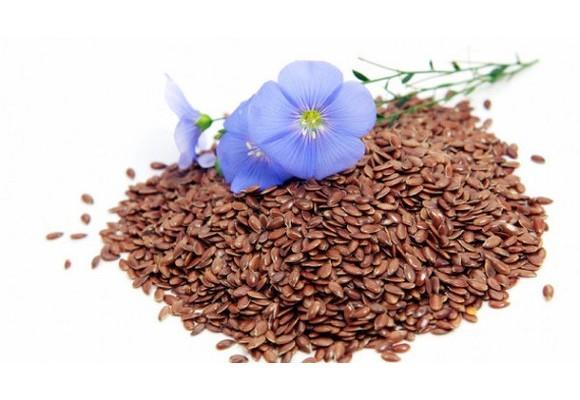 타임지가 선정한 10대 슈퍼푸드 생명의 씨앗, 천연영양의 보고 아마씨(Flaxseed) 효능