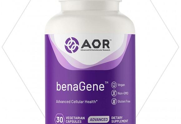 안티에이징 체중관리 세포건강 장수에 효능이 있는 니코틴아미드 NAD부스터 에이오알(AOR) 베나진(BenaGene)