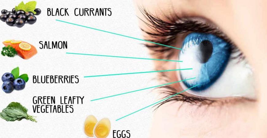 눈건강 영양제 루테인과 지아잔틴 효능 및 제품 고르는 법