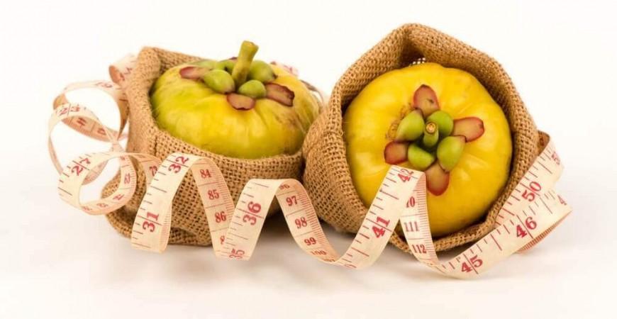 가르시니아캄보지아 추출물,천연 다이어트 보조제로 각광받아