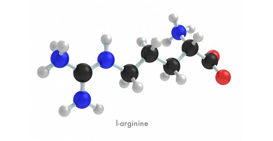 남성, 운동인에게 꼭 필요한 아미노산, 엘 아르기닌(L-arginine)